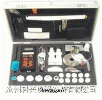 氯离子含量测试仪 RCT